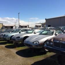 Jaguar Heaven Yard 2